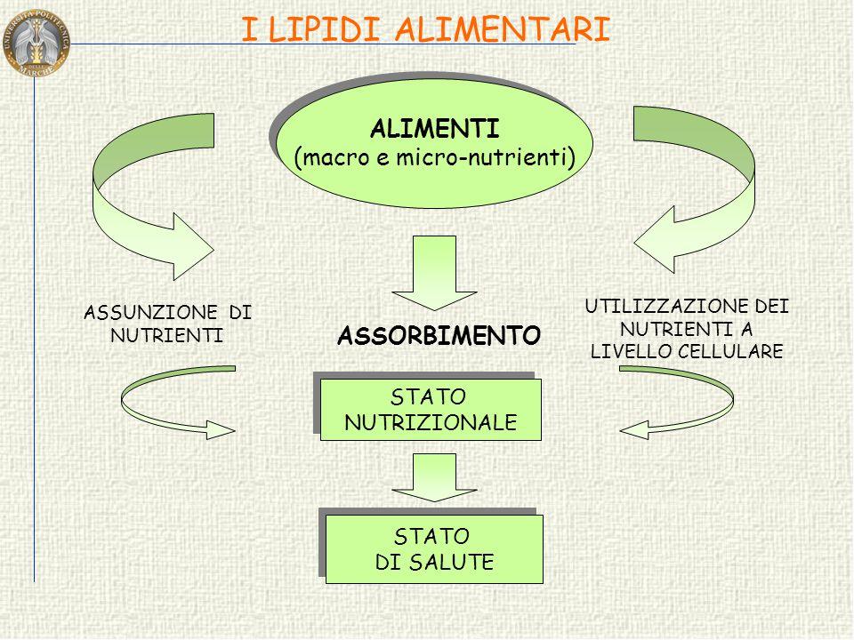 I LIPIDI ALIMENTARI ALIMENTI (macro e micro-nutrienti) ASSORBIMENTO