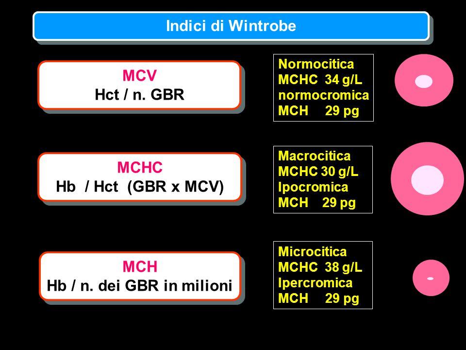 Indici di Wintrobe MCV Hct / n. GBR MCHC Hb / Hct (GBR x MCV) MCH