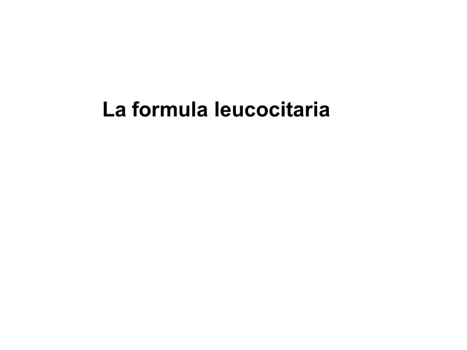 La formula leucocitaria