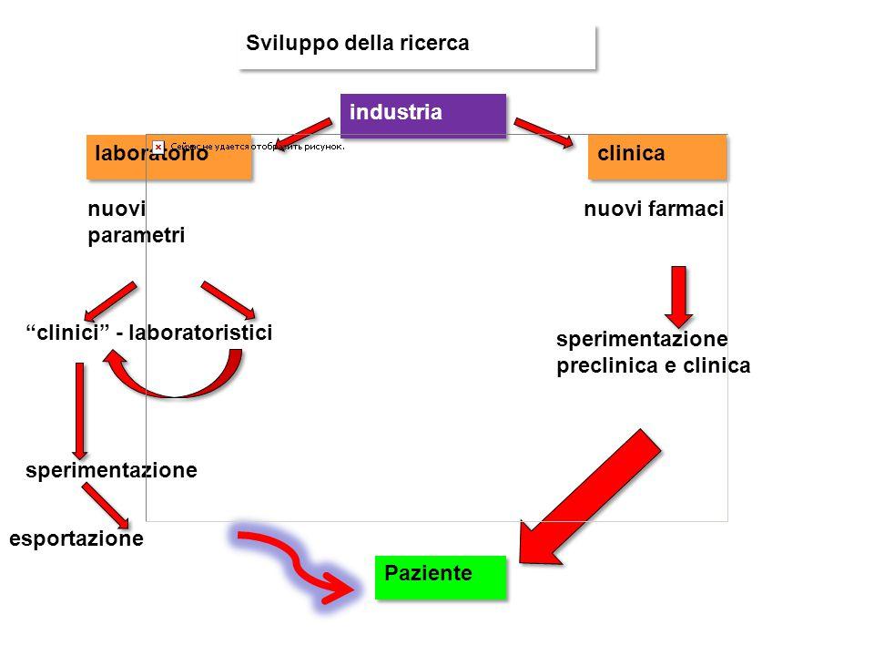 Sviluppo della ricerca