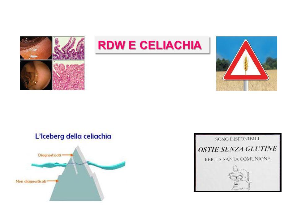 RDW E CELIACHIA