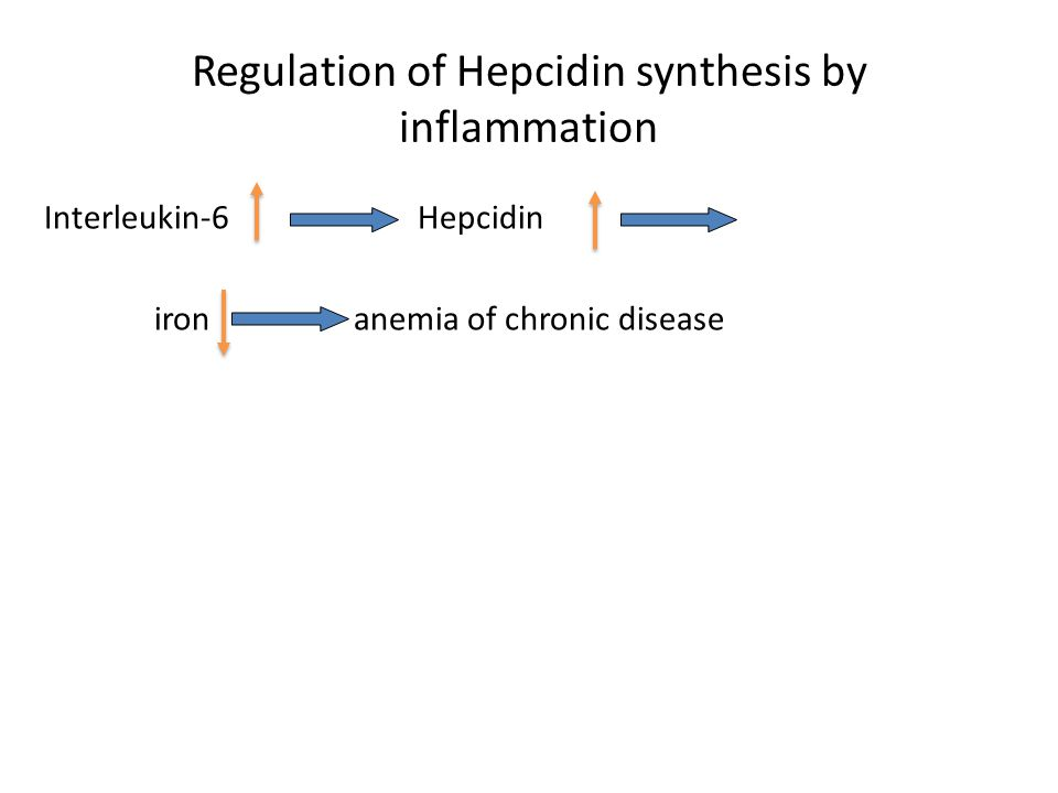 Regulation of Hepcidin synthesis by inflammation