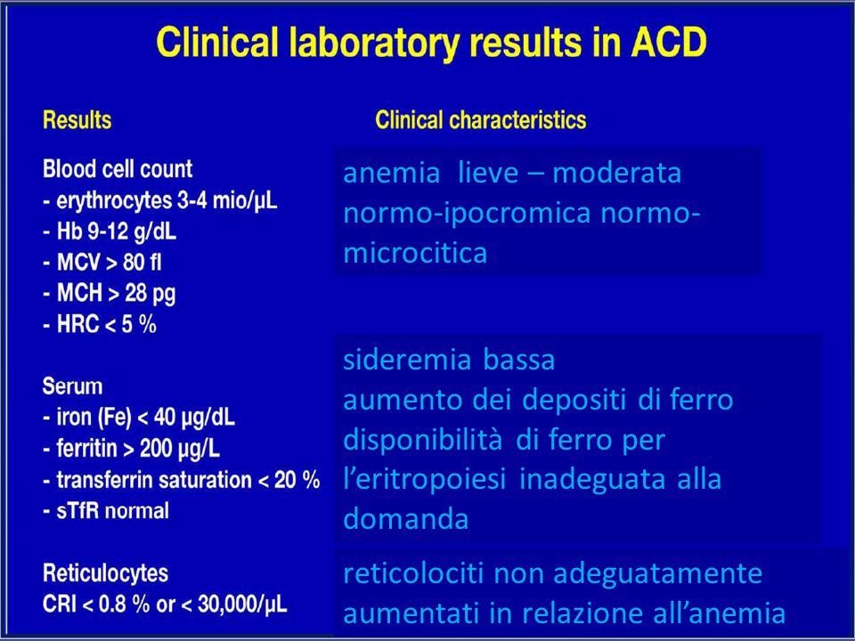 anemia lieve – moderata normo-ipocromica normo- microcitica