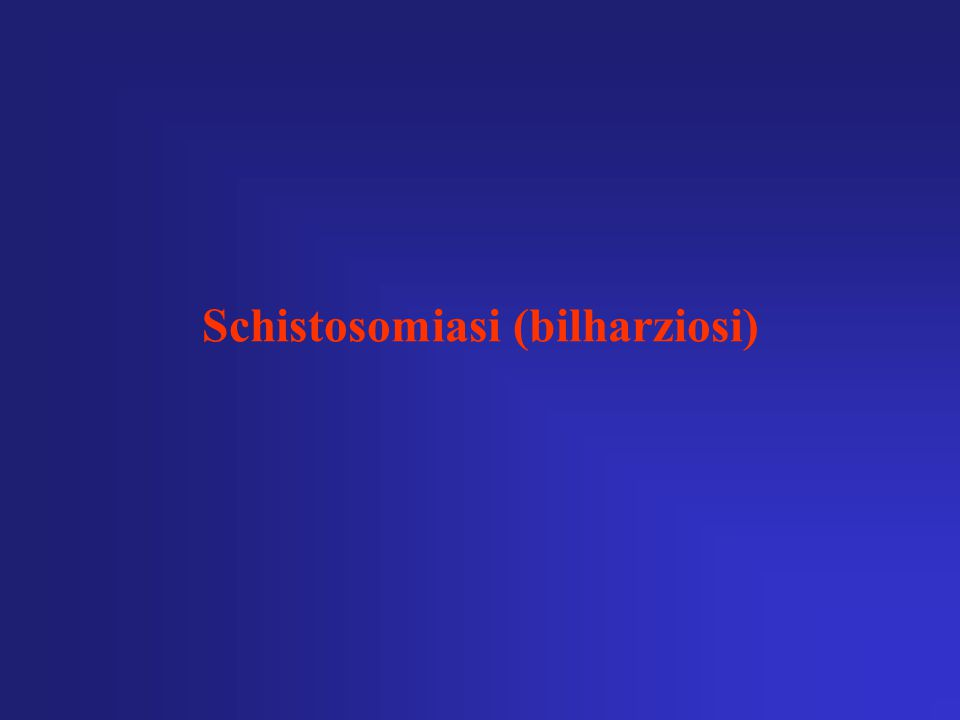 Schistosomiasi (bilharziosi)
