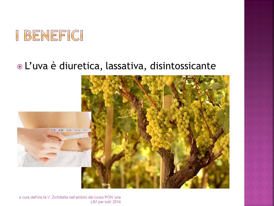 I benefici L'uva è diuretica, lassativa, disintossicante