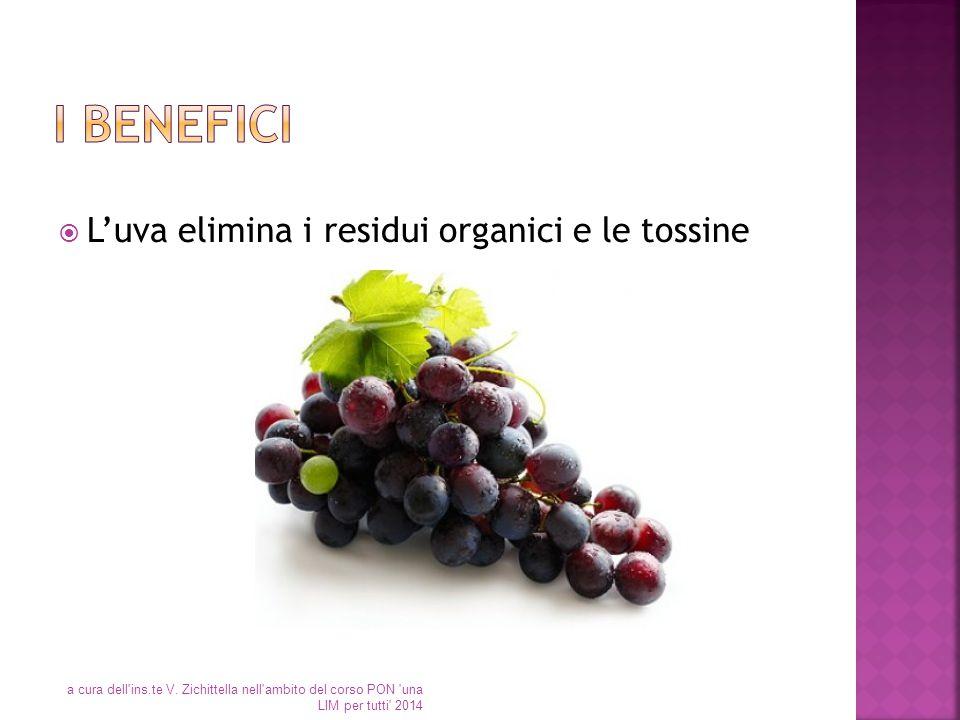 I benefici L'uva elimina i residui organici e le tossine