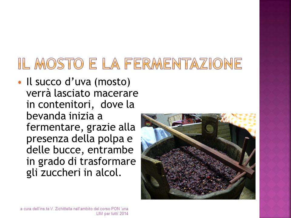 Il mosto e la fermentazione