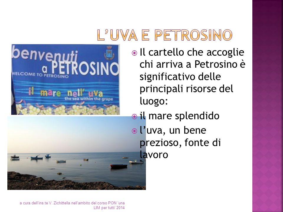 L'uva e Petrosino Il cartello che accoglie chi arriva a Petrosino è significativo delle principali risorse del luogo: