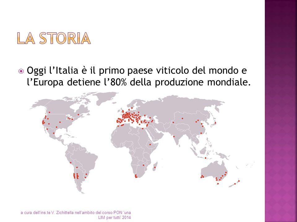 La storia Oggi l'Italia è il primo paese viticolo del mondo e l'Europa detiene l'80% della produzione mondiale.