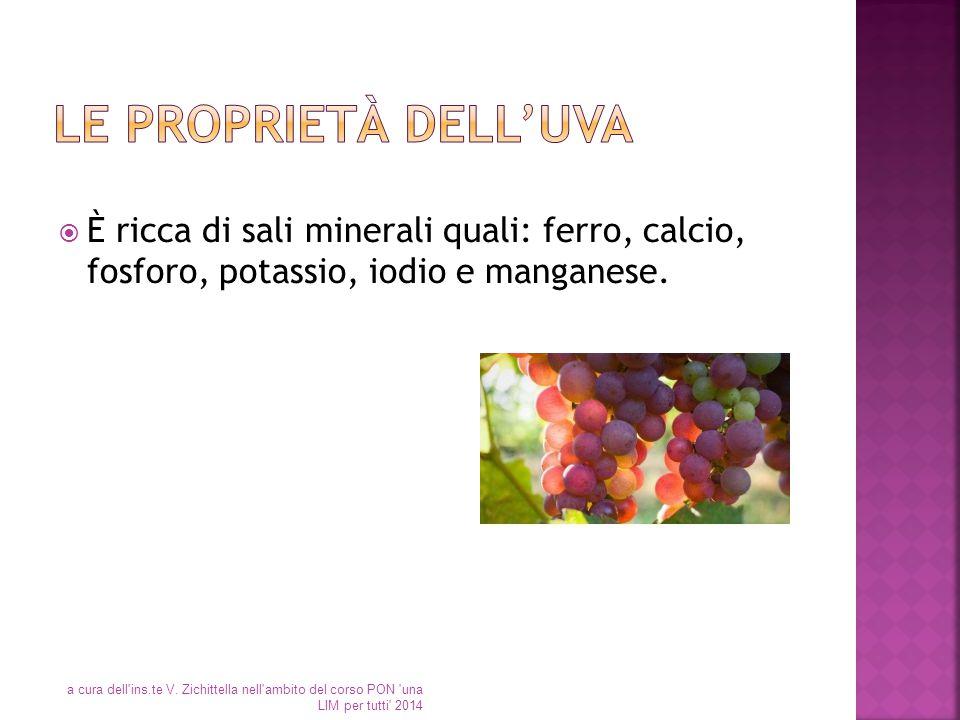 Le proprietà dell'uva È ricca di sali minerali quali: ferro, calcio, fosforo, potassio, iodio e manganese.