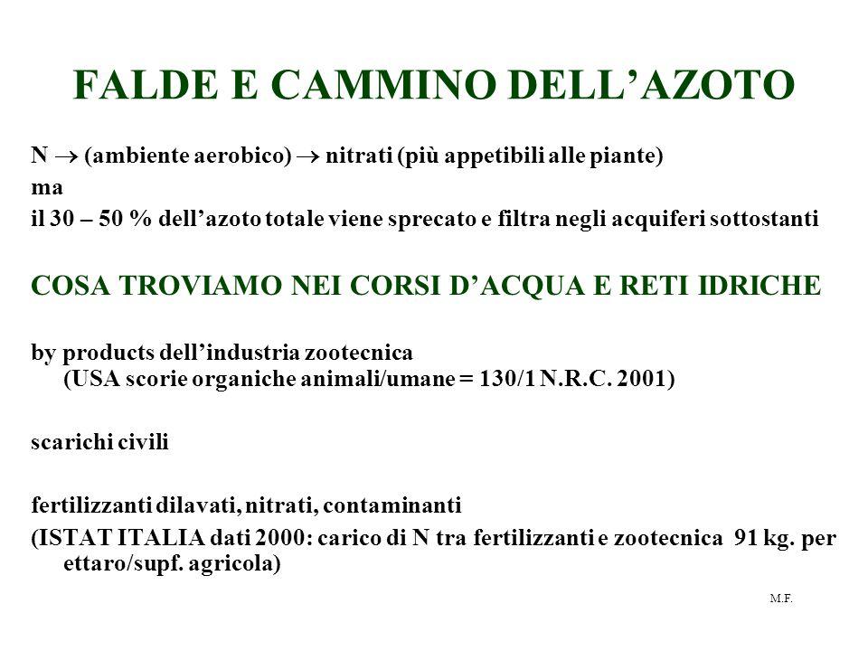 FALDE E CAMMINO DELL'AZOTO