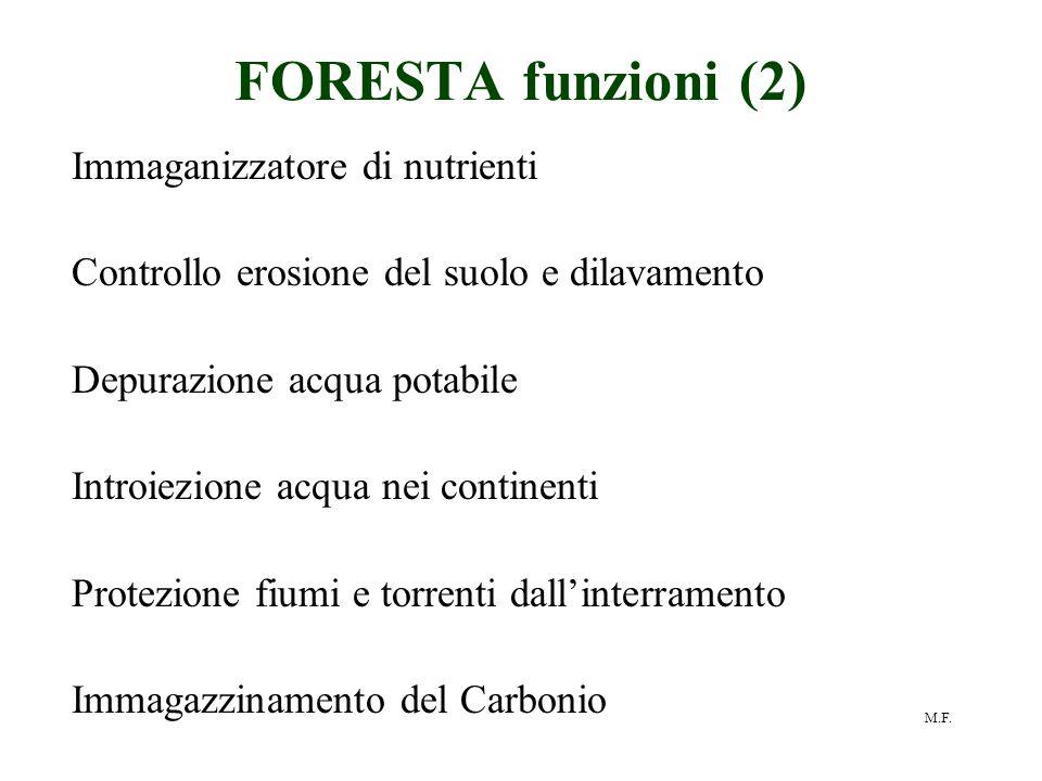 FORESTA funzioni (2) Immaganizzatore di nutrienti