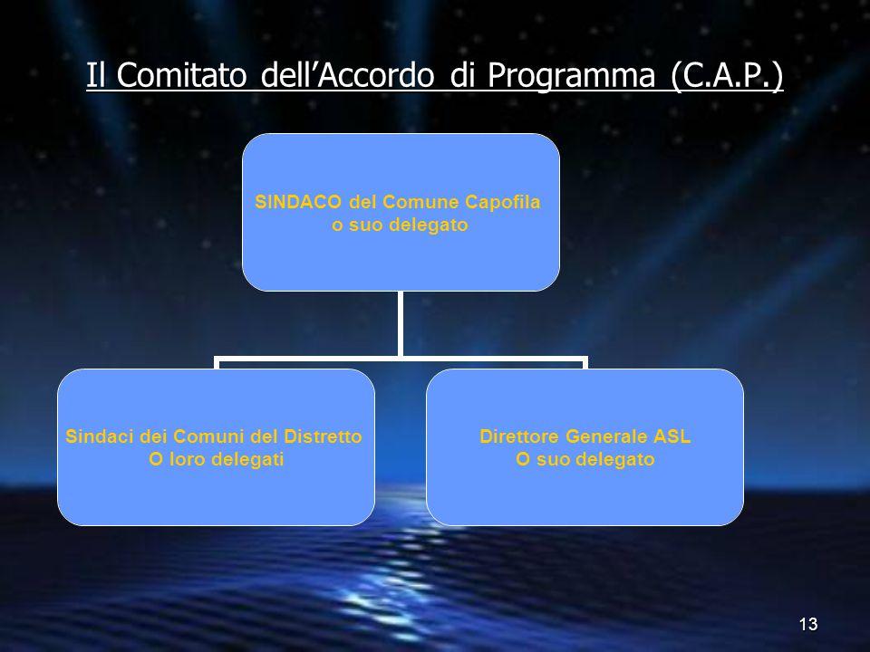 Il Comitato dell'Accordo di Programma (C.A.P.)