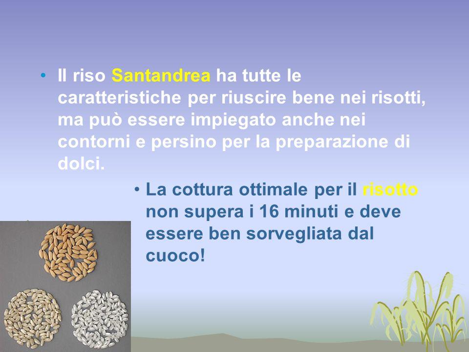 Il riso Santandrea ha tutte le caratteristiche per riuscire bene nei risotti, ma può essere impiegato anche nei contorni e persino per la preparazione di dolci.