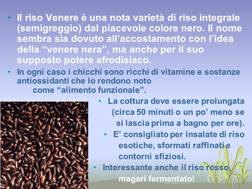 Il riso Venere è una nota varietà di riso integrale (semigreggio) dal piacevole colore nero. Il nome sembra sia dovuto all'accostamento con l'idea della venere nera , ma anche per il suo supposto potere afrodisiaco.