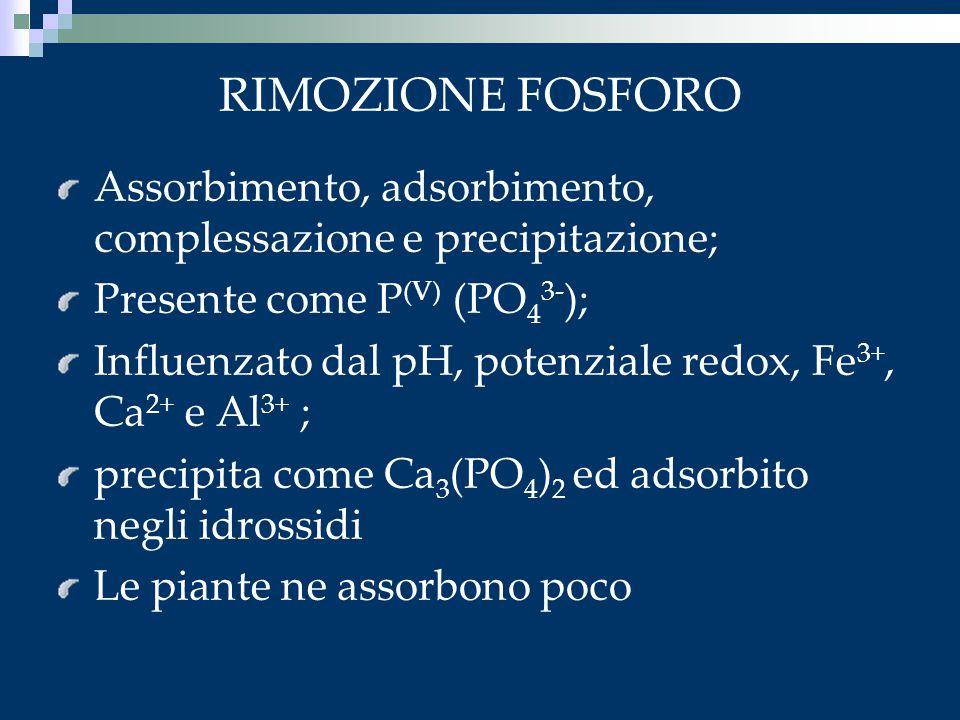 RIMOZIONE FOSFORO Assorbimento, adsorbimento, complessazione e precipitazione; Presente come P(V) (PO43-);