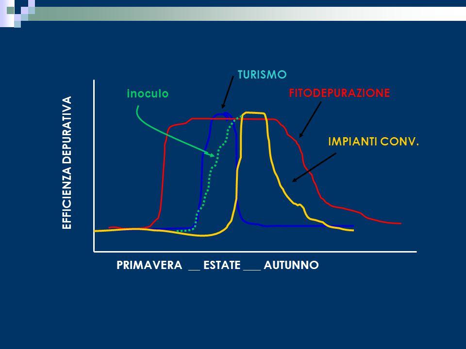 TURISMO inoculo. FITODEPURAZIONE. IMPIANTI CONV.