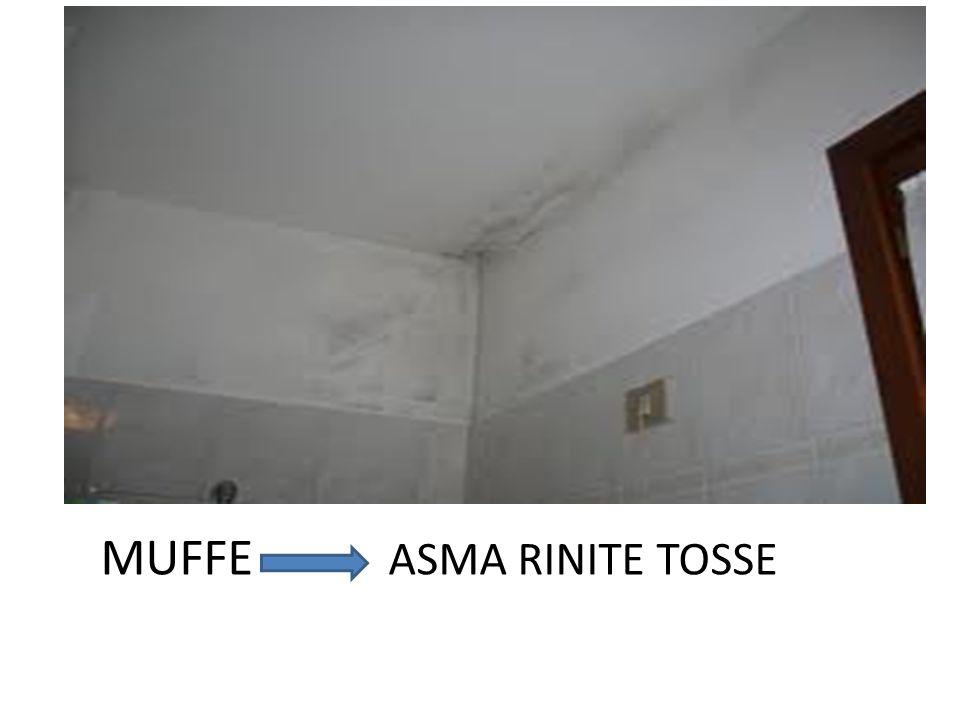 MUFFE ASMA RINITE TOSSE
