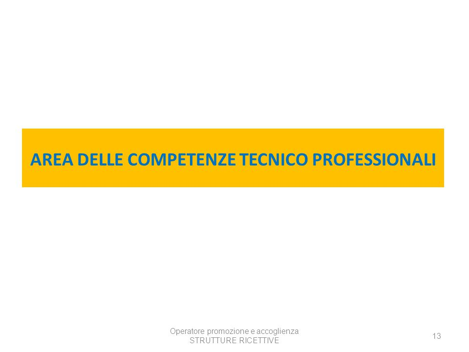 AREA DELLE COMPETENZE TECNICO PROFESSIONALI
