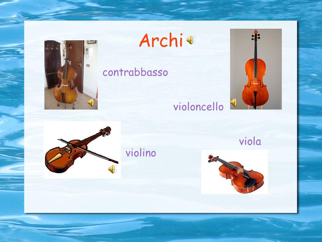 Archi contrabbasso violoncello viola violino