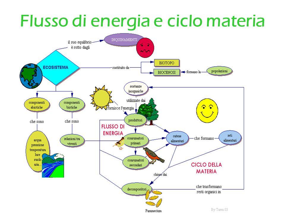 Flusso di energia e ciclo materia
