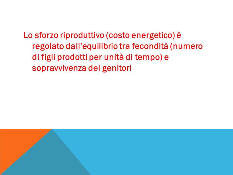 Lo sforzo riproduttivo (costo energetico) è regolato dall'equilibrio tra fecondità (numero di figli prodotti per unità di tempo) e sopravvivenza dei genitori