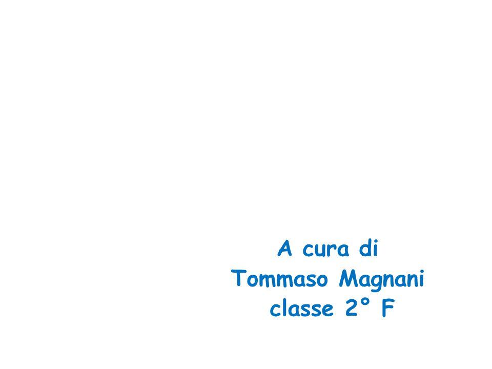 A cura di Tommaso Magnani classe 2° F