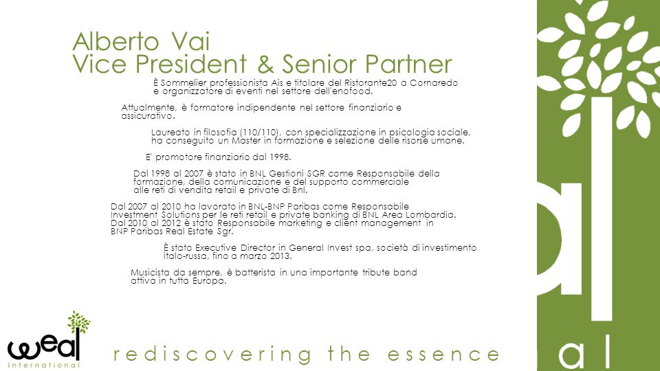 Vice President & Senior Partner