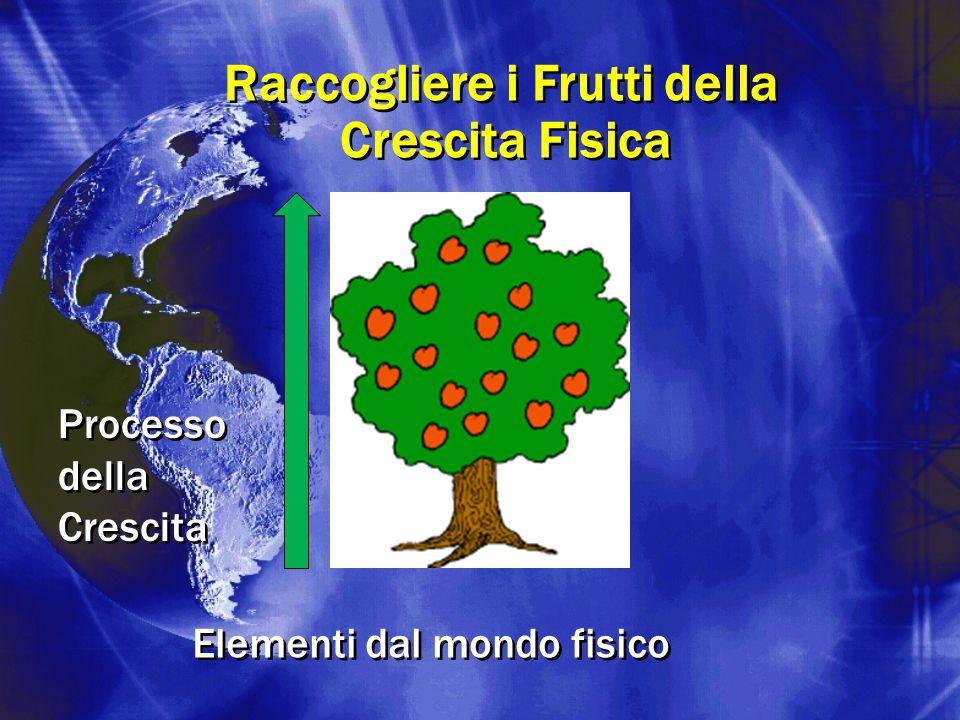 Raccogliere i Frutti della