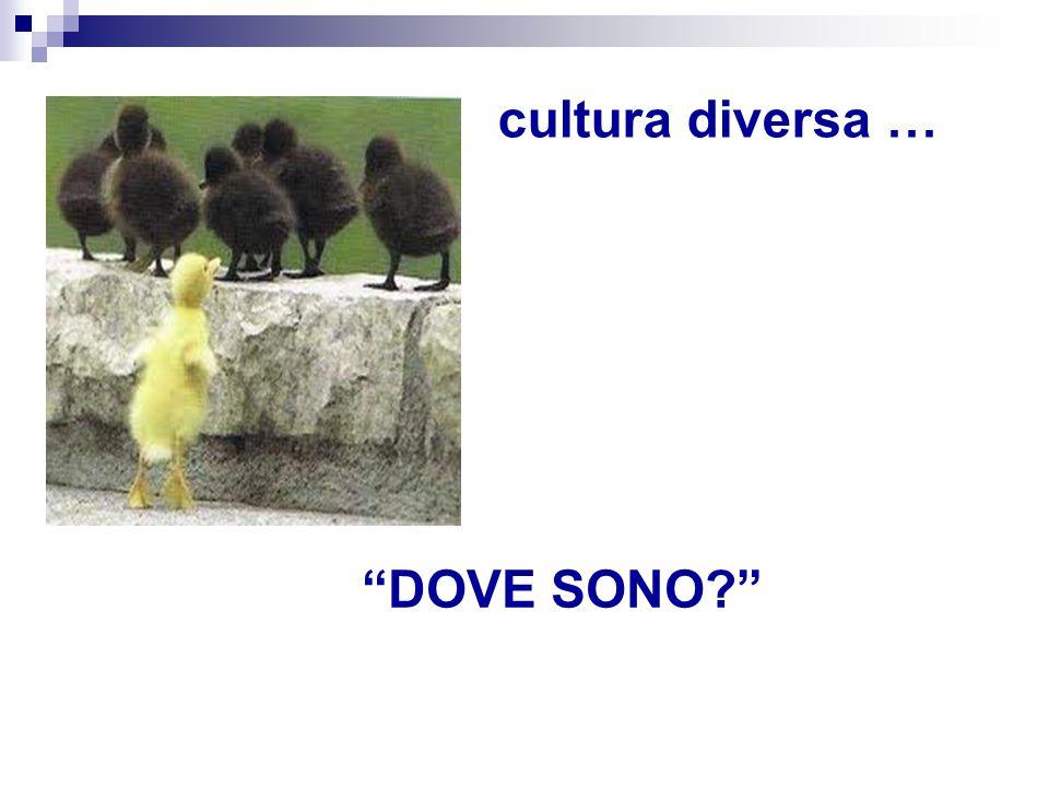 cultura diversa … DOVE SONO