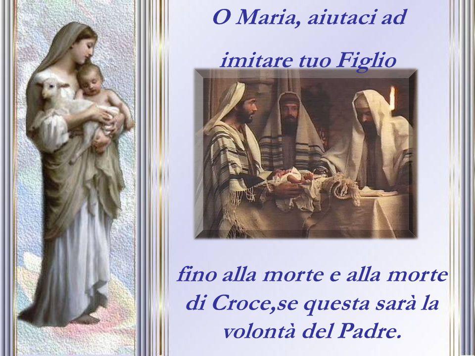 O Maria, aiutaci ad imitare tuo Figlio.
