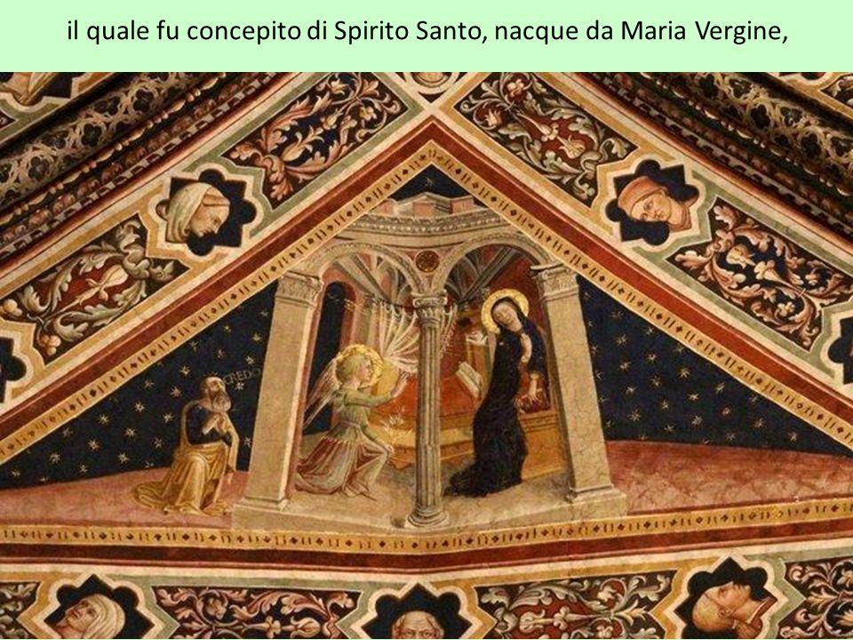il quale fu concepito di Spirito Santo, nacque da Maria Vergine,