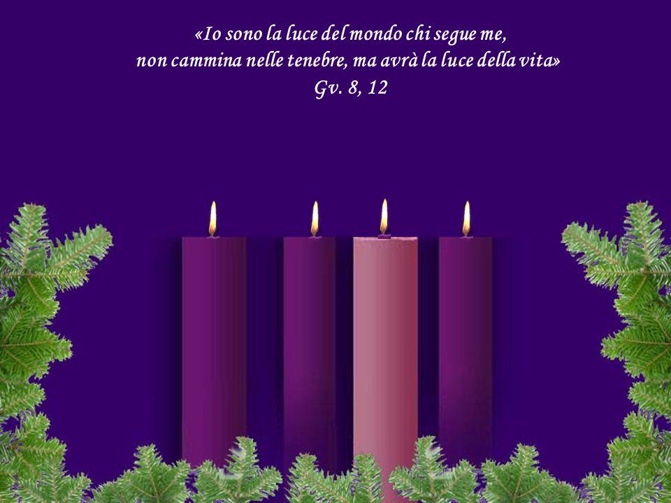 non cammina nelle tenebre, ma avrà la luce della vita» Gv. 8, 12