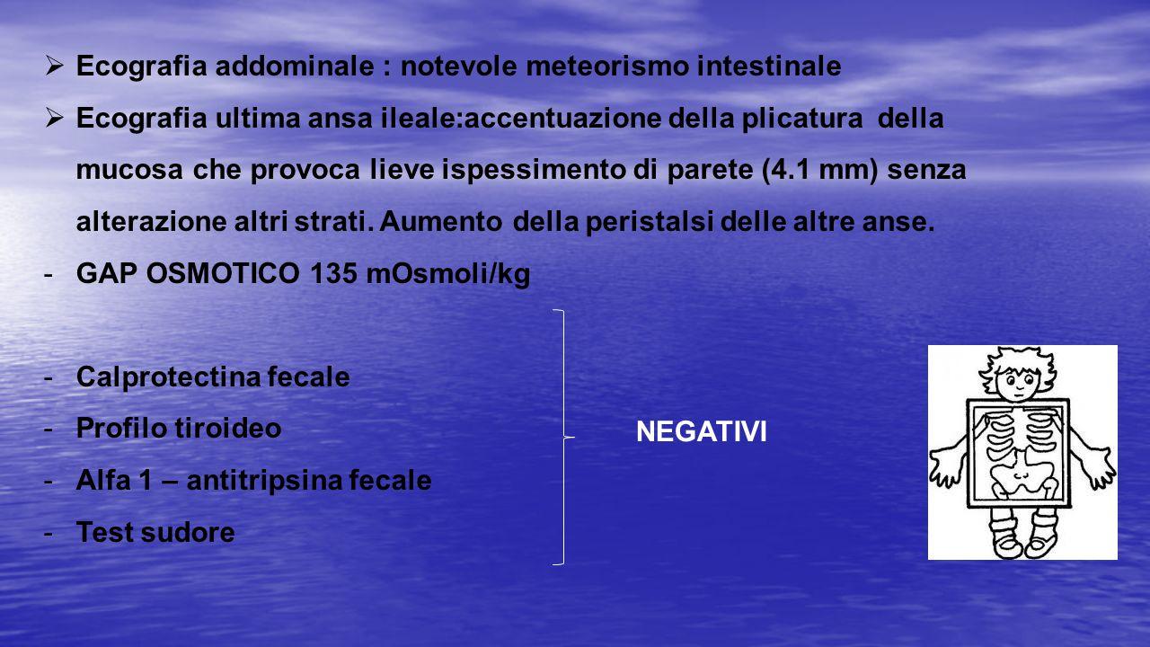 Ecografia addominale : notevole meteorismo intestinale