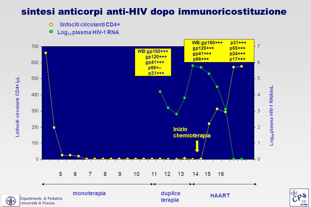 sintesi anticorpi anti-HIV dopo immunoricostituzione