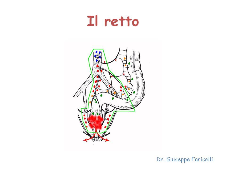 Il retto Dr. Giuseppe Fariselli