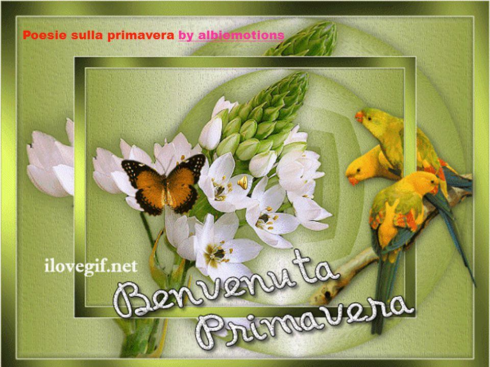 Poesie sulla primavera by albiemotions