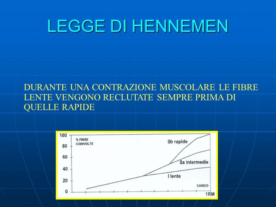 LEGGE DI HENNEMEN DURANTE UNA CONTRAZIONE MUSCOLARE LE FIBRE LENTE VENGONO RECLUTATE SEMPRE PRIMA DI QUELLE RAPIDE.