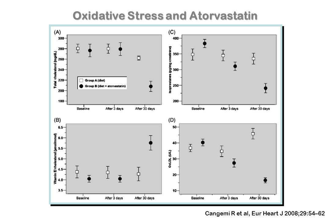 Oxidative Stress and Atorvastatin