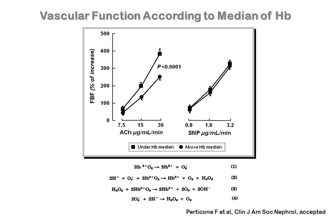 Vascular Function According to Median of Hb
