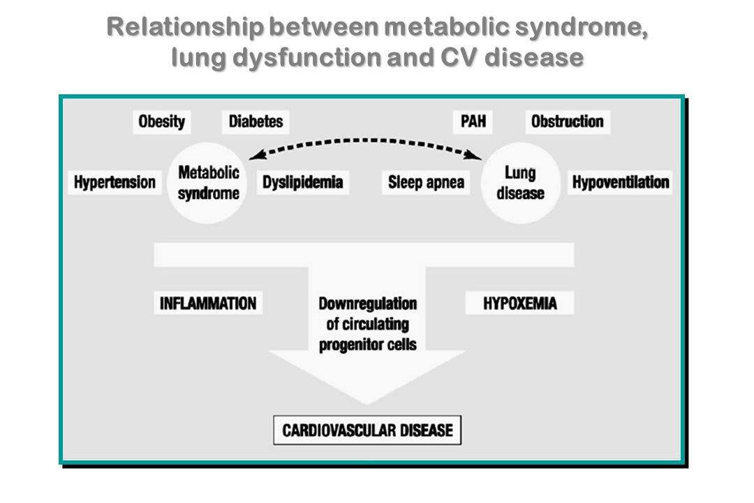 Relationship between metabolic syndrome, lung dysfunction and CV disease