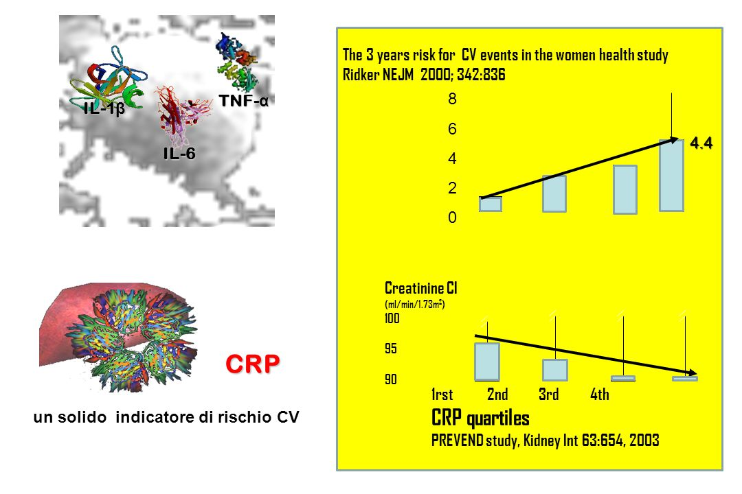 IL-6 TNF-α. IL-1β. 1rst 2nd 3rd 4th. CRP quartiles. PREVEND study, Kidney Int 63:654, 2003.