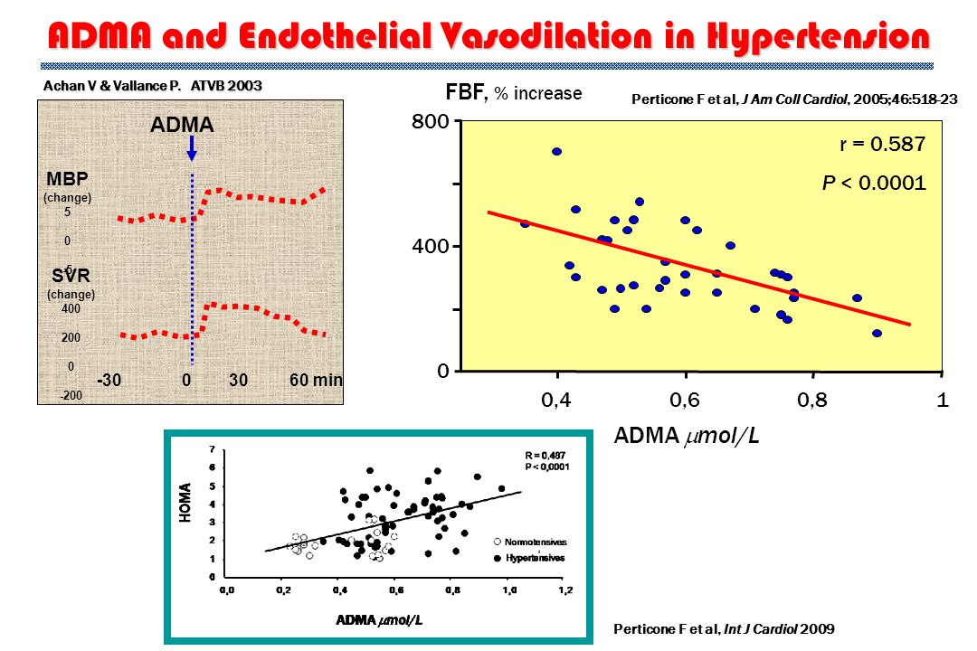 ADMA and Endothelial Vasodilation in Hypertension