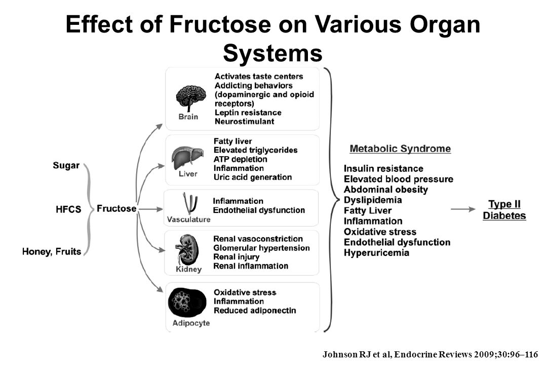 Effect of Fructose on Various Organ Systems
