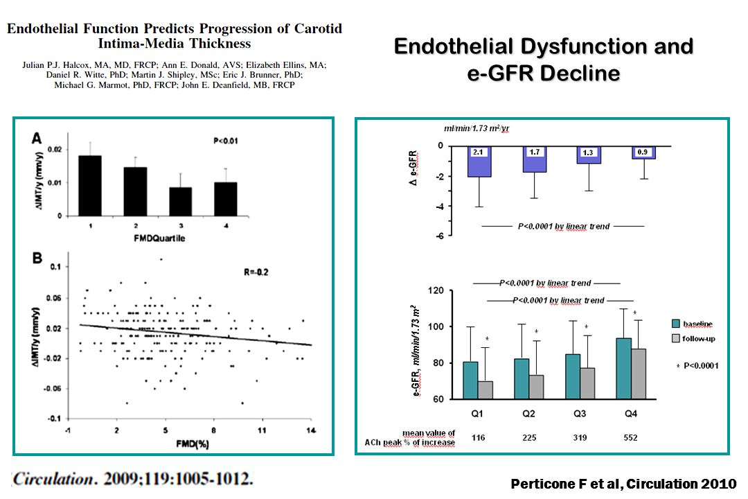 Endothelial Dysfunction and e-GFR Decline