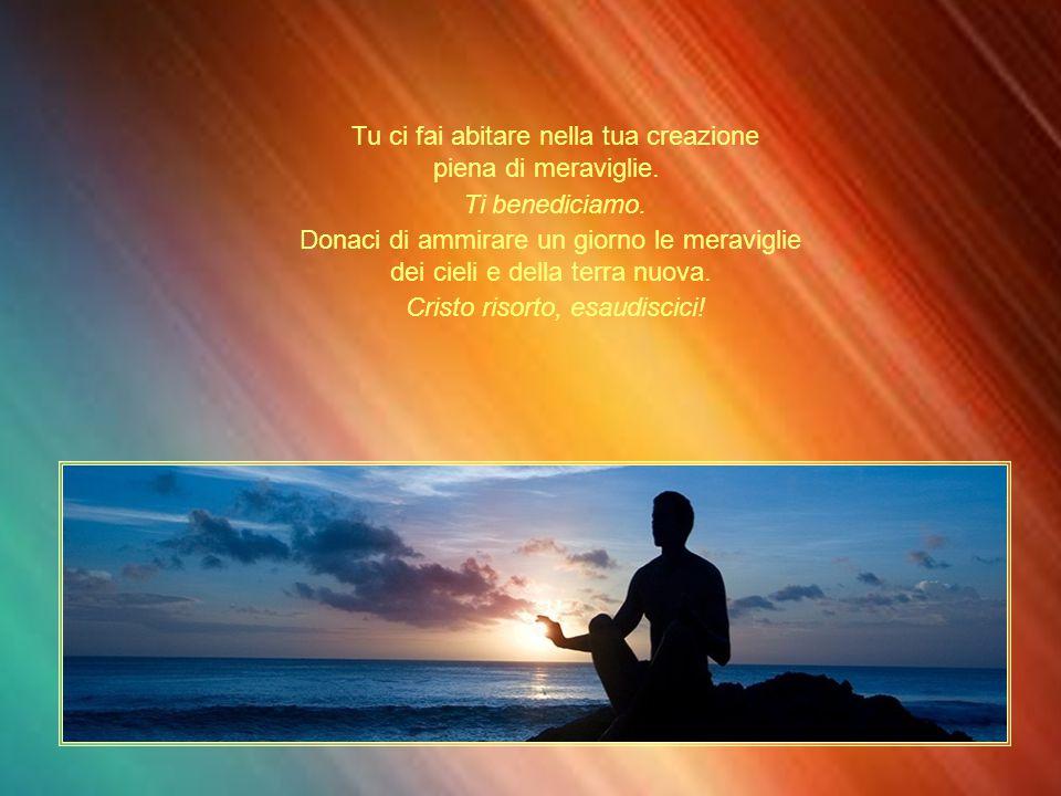 Tu ci fai abitare nella tua creazione piena di meraviglie.