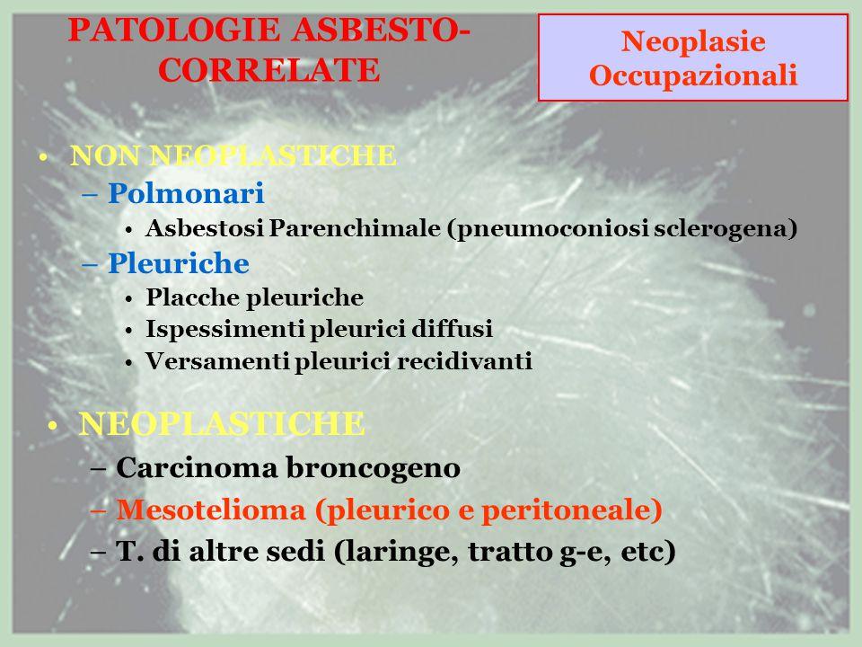 PATOLOGIE ASBESTO-CORRELATE