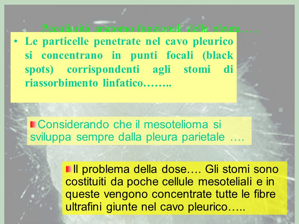 Peculiarità anatomo funzionali della pleura…..
