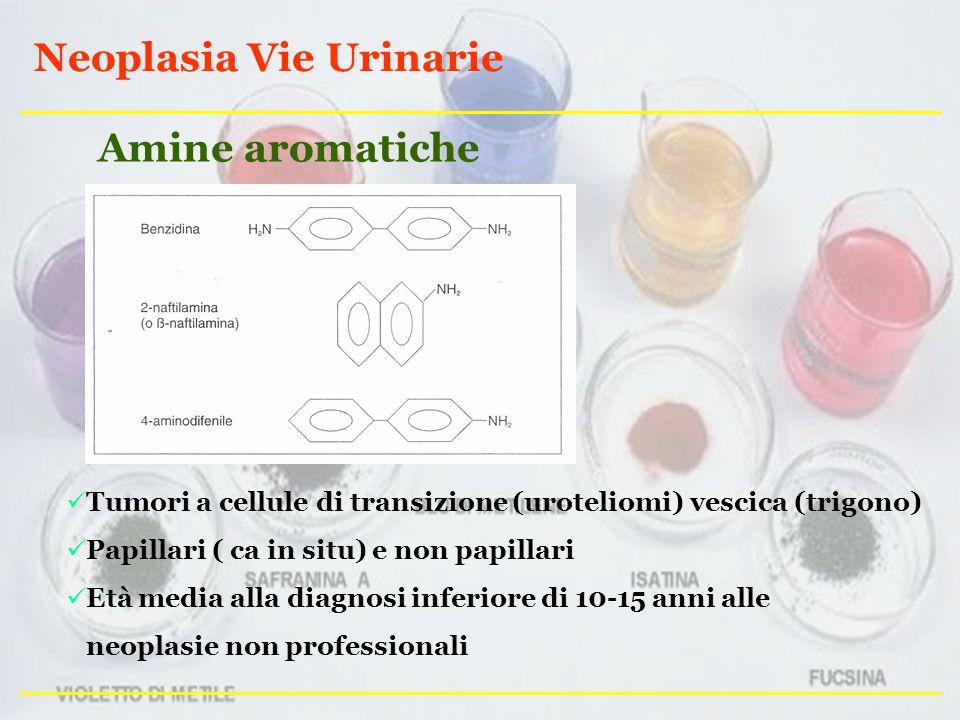 Neoplasia Vie Urinarie