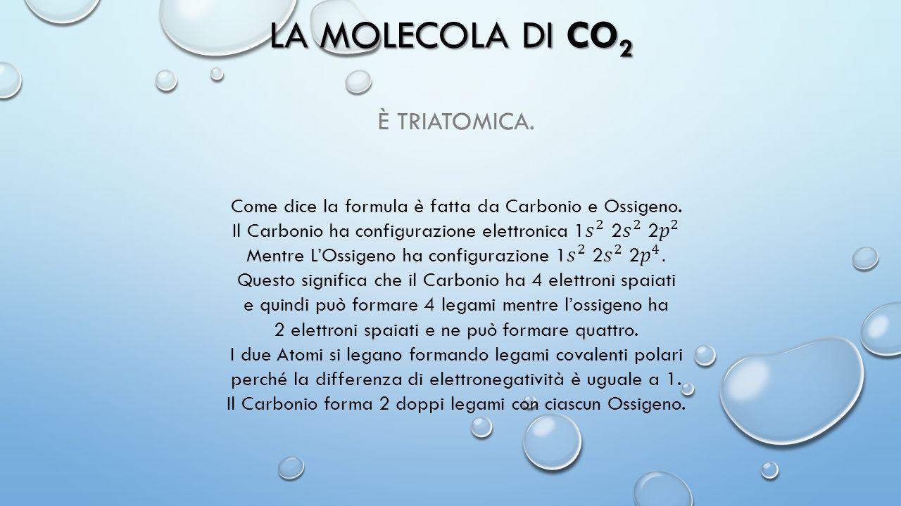 La molecola di CO2 È triatomica.